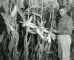 Odell Powell inspects corn