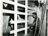 Elevated, mechanically-equipped milking stalls