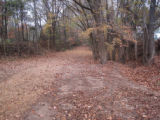 Port Royal State Park:  old roadbed in fall woods
