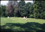 Beth Salem Presbyterian Church: alternate view of cemetery