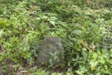 Frierson-Voorhies Cemetery: unmarked headstone