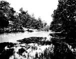 Kern Photograph Collection; Stones River, McFadden's Ford.