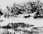 Kern Photograph Collection; Stones River, McFadden Ford.